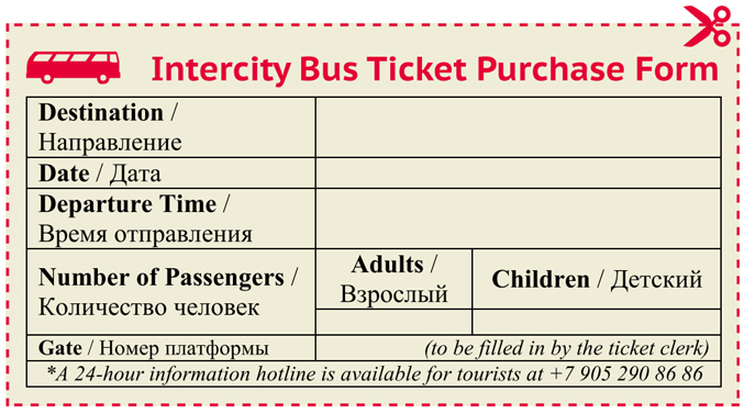 International and Intercity Bus – Ticket Format